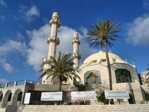 Haifa-Trail-Sect14-P1610817