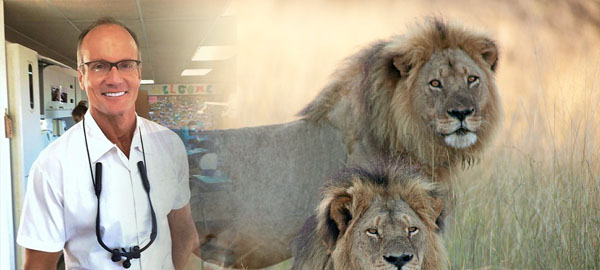 American dentist being sought for killings Africa's most famous lion Cecil
